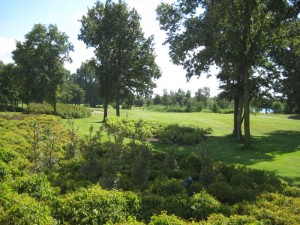 Grontmij Golfbaan Naarderbos 1